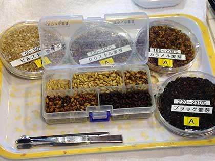 いろんな種類の麦芽がある