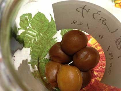 梅しょうゆの梅