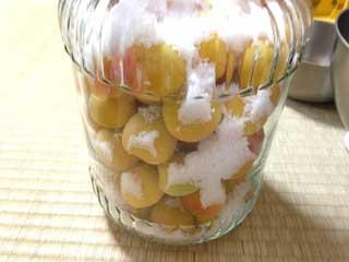 梅酒ビンに梅と塩を交互に入れて最後に置き塩