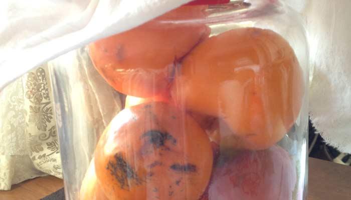 柿酢作りました 2013仕込み
